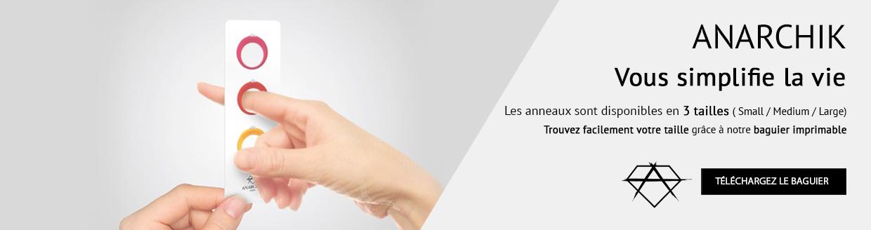 slide3-baguier-fr.jpg